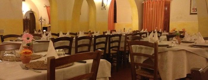 Il Nuovo Poggio D'Oro is one of Cibo.