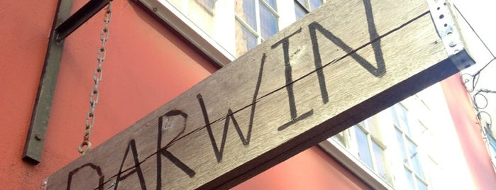 Darwin Cafe is one of SF coffee.