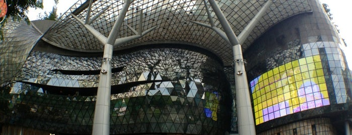 ION Orchard is one of Must Visit Places in Singapore.