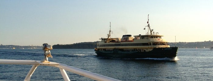 Manly Fast Ferry is one of Orte, die RazzLe gefallen.