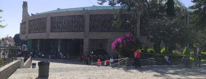 Sagrado Recinto del Tepeyac is one of Wong : понравившиеся места.
