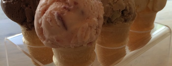 Hammond's Gourmet Ice Cream is one of SD.