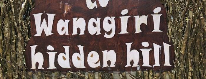 Wanagiri Hidden Hill is one of B.