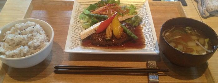 木を植えるレストラン オーロラ下北沢店 is one of Food of the world.