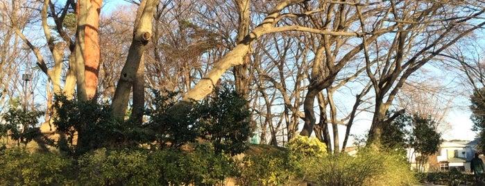 Tsukayama Park is one of Locais curtidos por ジャック.