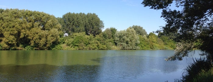 Wuhlesee is one of Grünes Berlin.