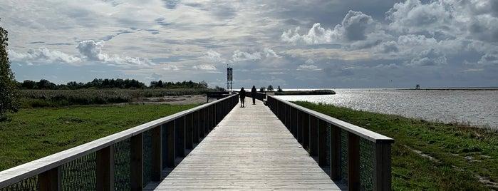 Pärnu muul is one of Eesti.