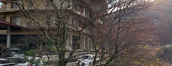 箱根湯本 ホテル河鹿荘 is one of Tempat yang Disukai Felipe.