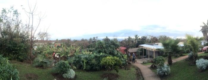 Hotel Rapanui is one of Jorge 님이 좋아한 장소.