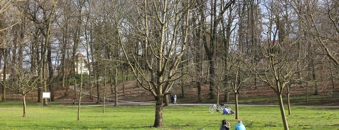 Stadtpark is one of สถานที่ที่ Daniel ถูกใจ.