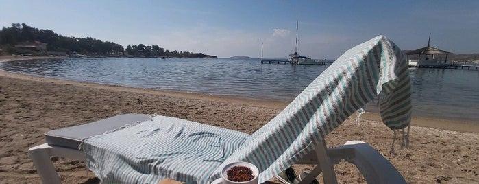 Mark Warner Phokaia Resort is one of İzmir İzmir.