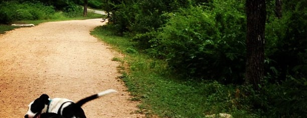 Shoal Creek Dog Park is one of Dog.