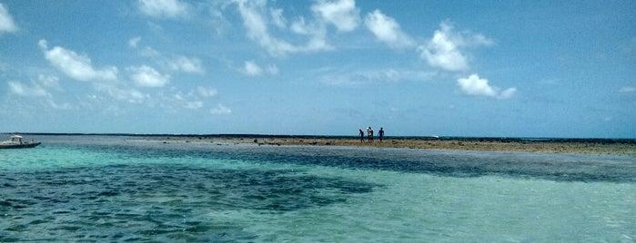 Japaratinga is one of Praias Maceió.