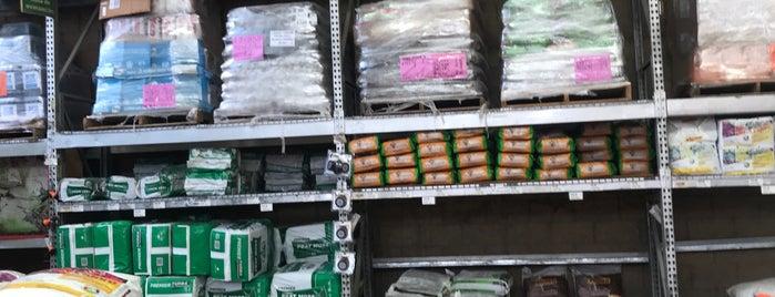 The Home Depot is one of Tempat yang Disukai Liliana.