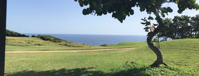 Royal Isabela Private Golf  Club is one of Tempat yang Disimpan Odie.