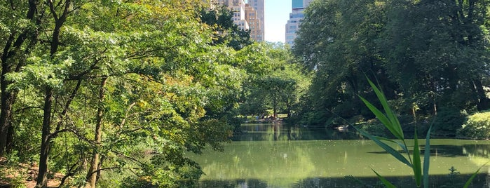 Central Park - The Waterfall is one of Locais salvos de Lizzie.