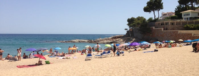 Terrazeo en la costa catalana