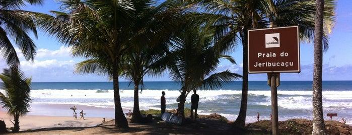 Praia de Jeribucaçu is one of สถานที่ที่ Joao Ricardo ถูกใจ.