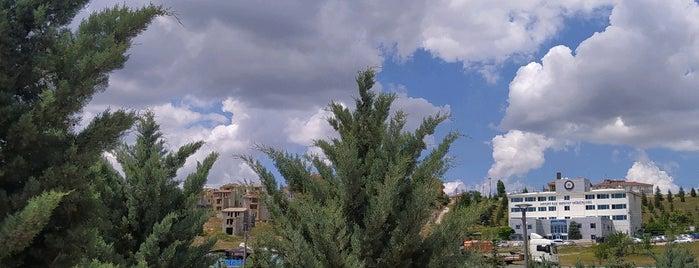 Akyurt Mesire Alani is one of Ankara Mesire Alanları.