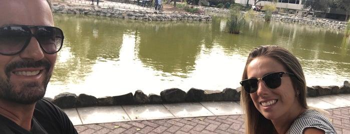 Laguna del Olivar is one of Posti che sono piaciuti a Sebastian.
