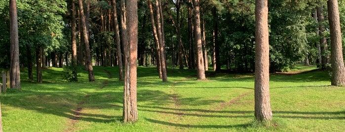 Pärnu Rääma disc golfi park is one of Top Picks for Disc Golf Courses 2.