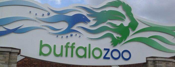 Buffalo Zoo is one of The Best of Buffalo, NY.