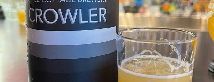 Beer Zombies Draft Room & Bottle Shop is one of Viva Las Vegas.