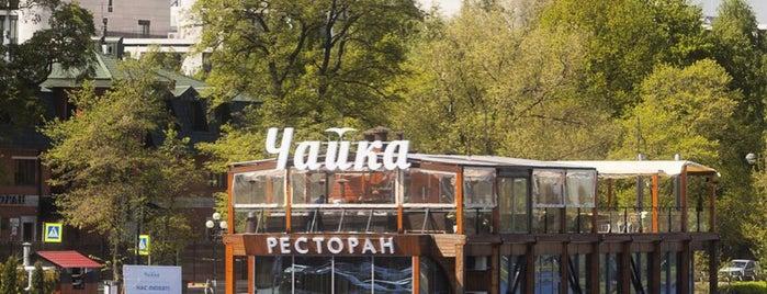 Chaika is one of Рестораны СПб.