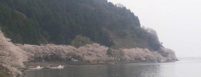 海津大崎 is one of アウトドア&景観スポット.