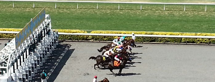 Turf Club Del Mar Racetrack is one of Priscillaさんのお気に入りスポット.