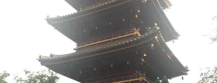 The Five-storied Pagoda of the Former Kan'ei-ji Temple is one of Tokyo 2019.