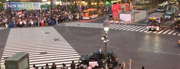 Shibuya Crossing is one of Tokyo 2019.