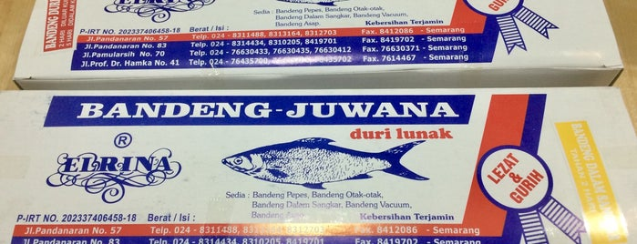 Bandeng Juwana Elrina is one of Semarang Trips.