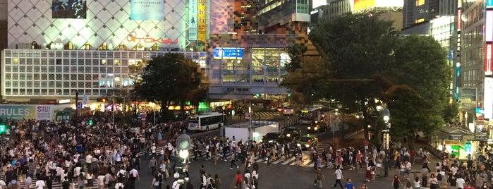 Shibuya is one of Tokyo 2019.