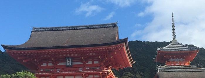 Niomon Gate is one of Kyoto-Osaka 2019.