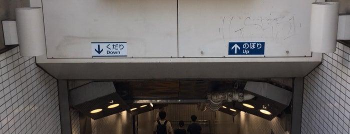 Meiji-jingumae 'Harajuku' Station is one of Tokyo 2019.