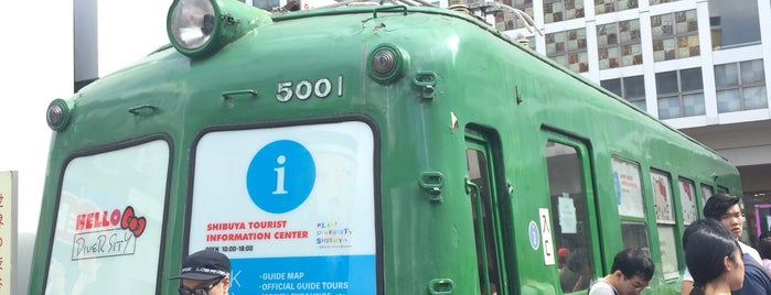 Tokyu 5001 Aogaeru is one of Tokyo 2019.