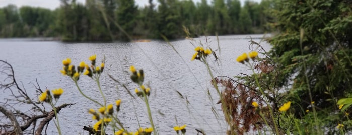 Bear Head Lake State Park is one of Activities.