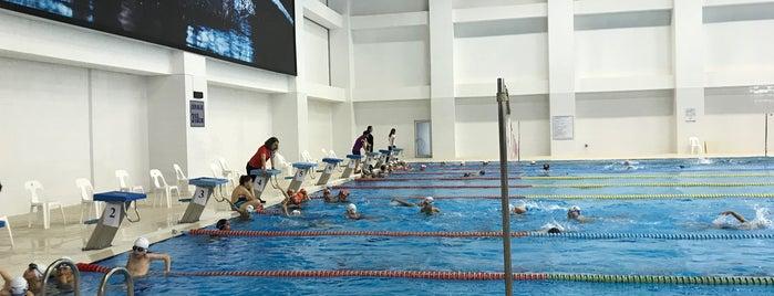 Adnan Menderes Olimpik Yüzme Havuzu is one of Şakir: сохраненные места.