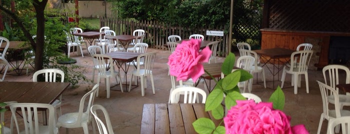 Morning Glory Cafe is one of PHX Patios in The Valley.