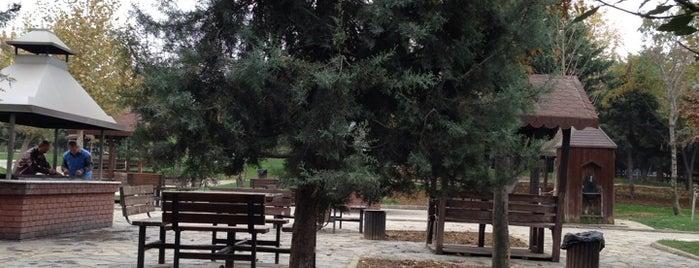 Bahçelievler Şehir Korusu is one of kaydedilenler.