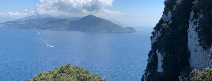 Villa Lysis is one of Capri.