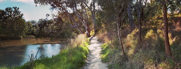 Yarra Bend Park is one of Lugares favoritos de T..