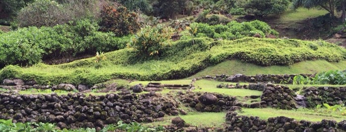 Limahuli Garden And Preserve is one of Hawaii Spots.