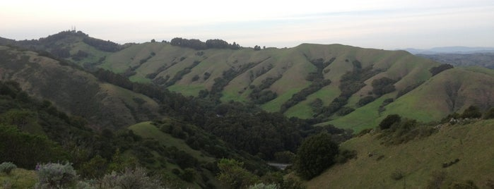 Sibley Volcanic Regional Preserve is one of Oakland.