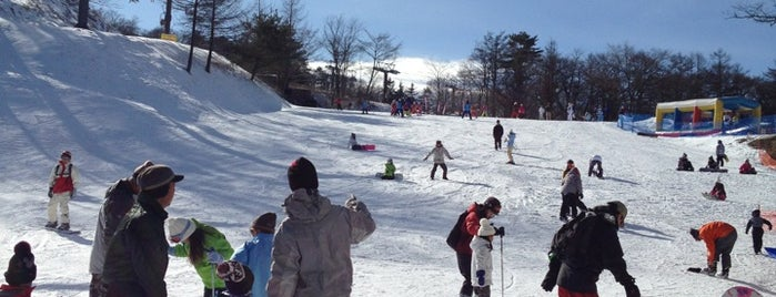 Karuizawa Prince Hotel ski field is one of Japan Korea Terrace H.