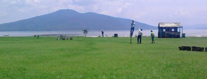Chupicuaro is one of สถานที่ที่ David ถูกใจ.