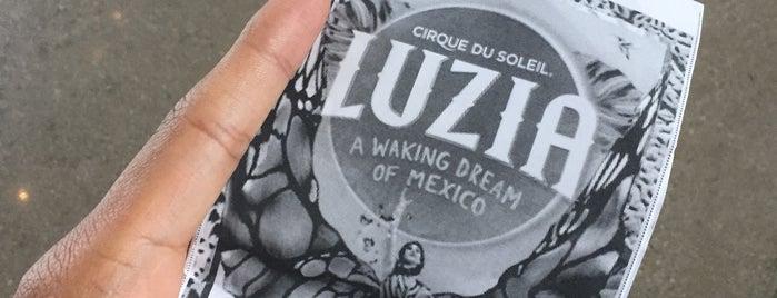 Luzia By Cirque Du Soleil is one of Tempat yang Disukai Mark.