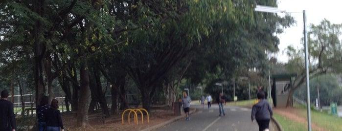 Parque Villa-Lobos is one of Lugares legais em São Paulo.