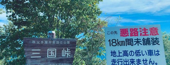 三国峠 is one of 超す峠 (my favorite passes).